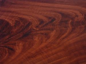Gỗ tự nhiên là gì? Ứng dụng của gỗ tự nhiên trong sản xuất nội thất